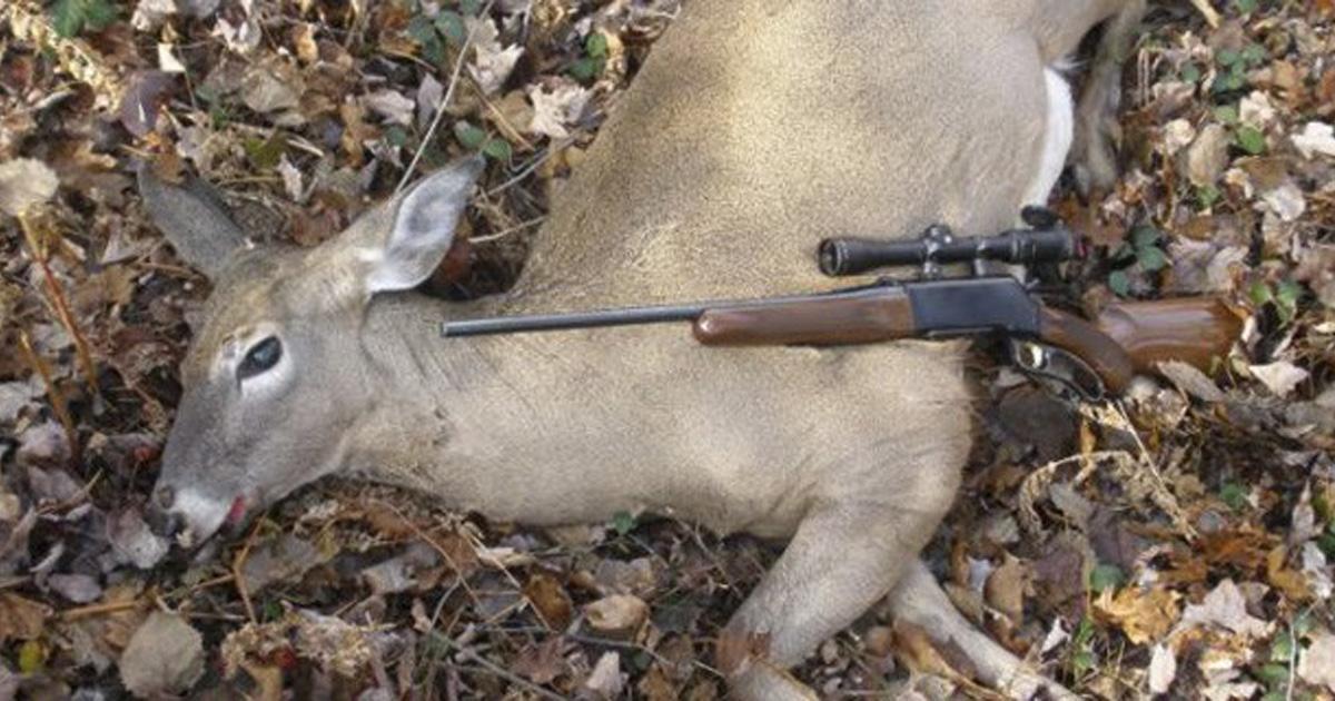 Quiten los programas de caza en RTVE!