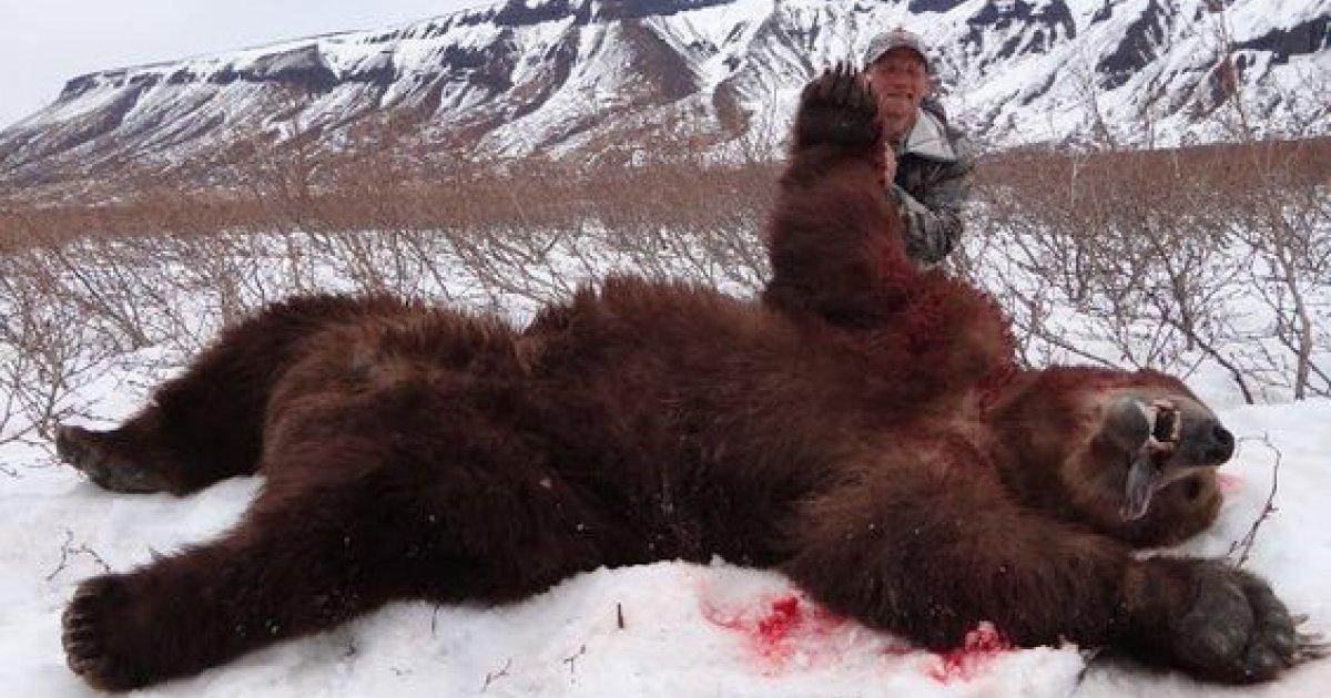 National Geographic ne doit pas diffuser des programmes montrant des chasses d'animaux