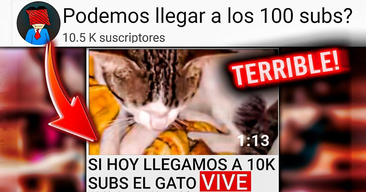YouTube must close this channel for animal abuse