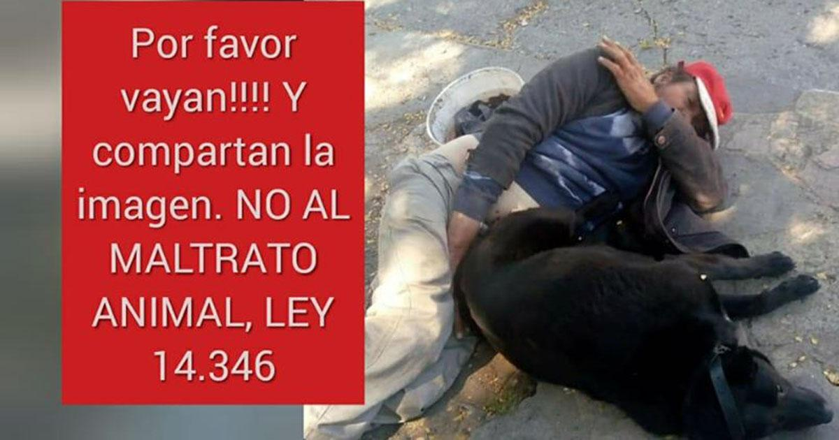 Imprison the serial rapist of dogs of Bariloche!