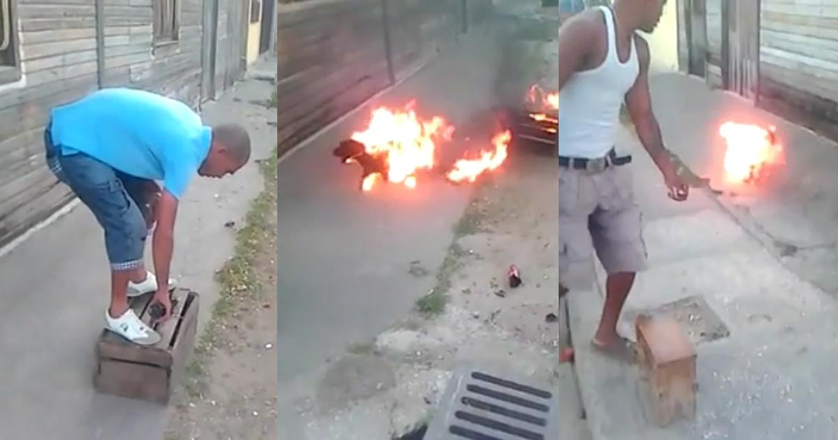 Burned and tortured a puppy, we want JUSTICE!