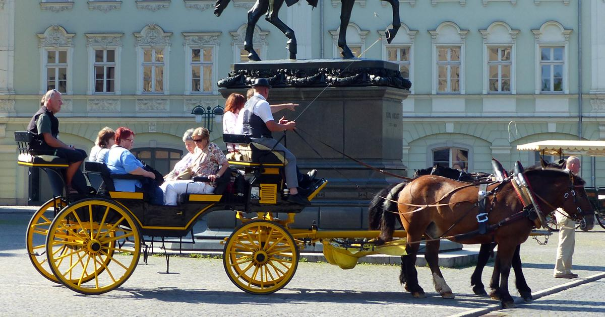 Abolish horse-drawn carriages for tourism